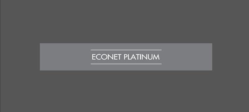 econet platinum logo